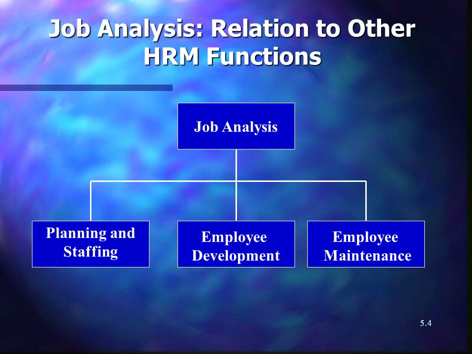 Job Analysis: Relation to Other HRM Functions