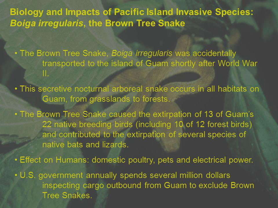 Biology and Impacts of Pacific Island Invasive Species: