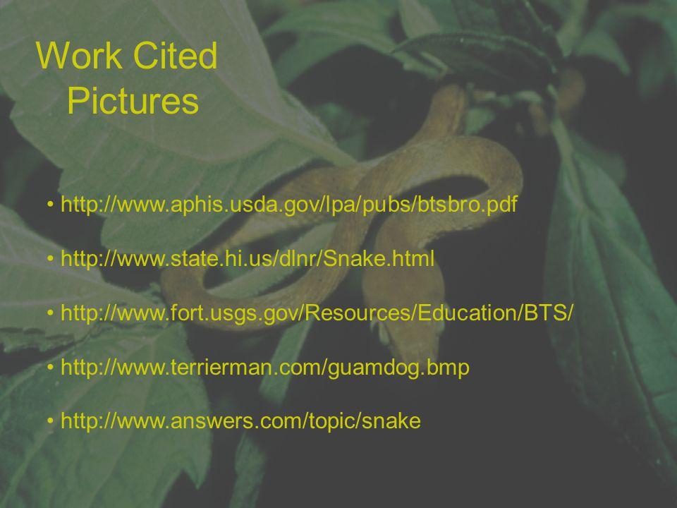 Work Cited Pictures http://www.aphis.usda.gov/lpa/pubs/btsbro.pdf