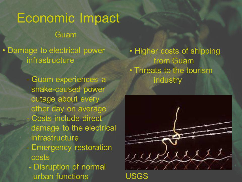 Economic Impact Guam Damage to electrical power infrastructure