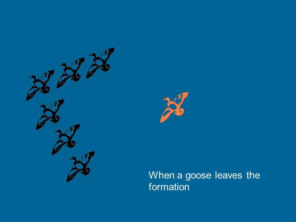 When a goose leaves the formation..