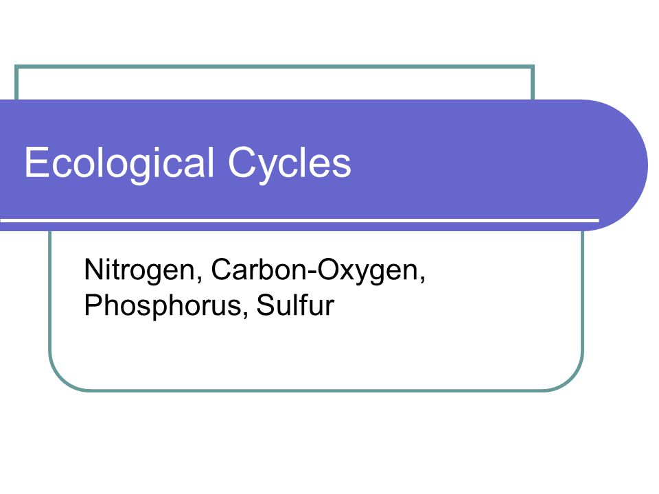 Nitrogen, Carbon-Oxygen, Phosphorus, Sulfur
