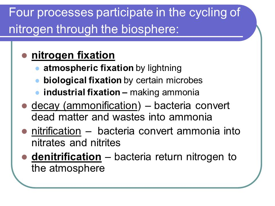 Four processes participate in the cycling of nitrogen through the biosphere: