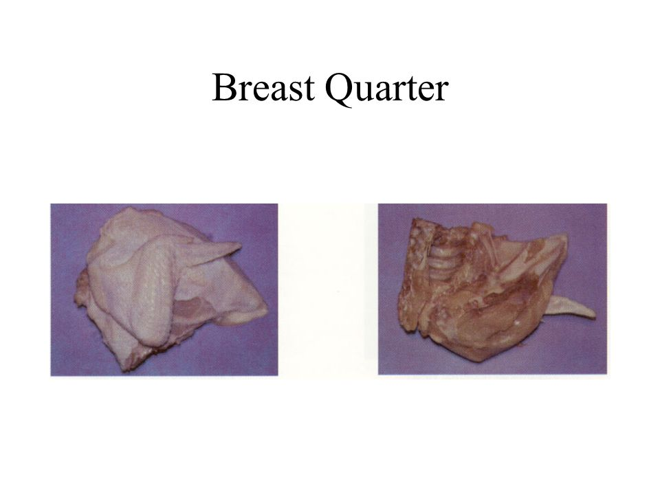 Breast Quarter