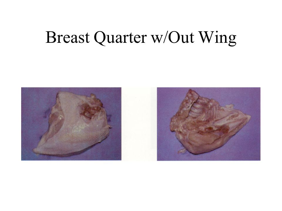 Breast Quarter w/Out Wing