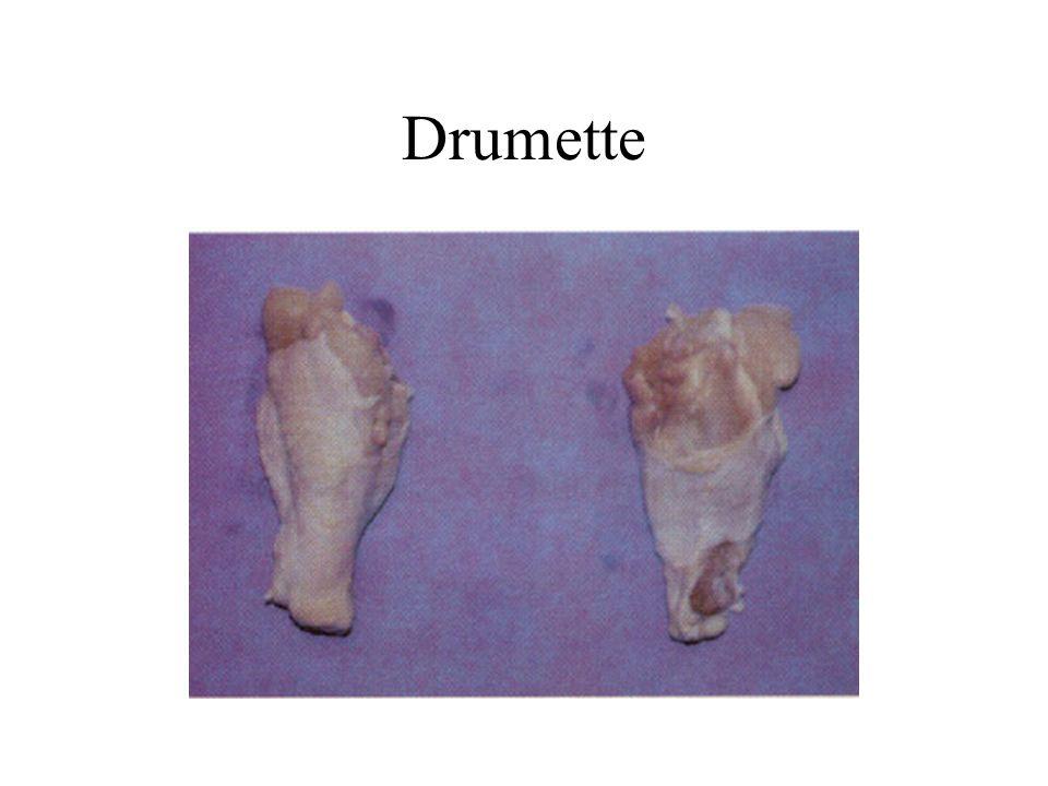 Drumette