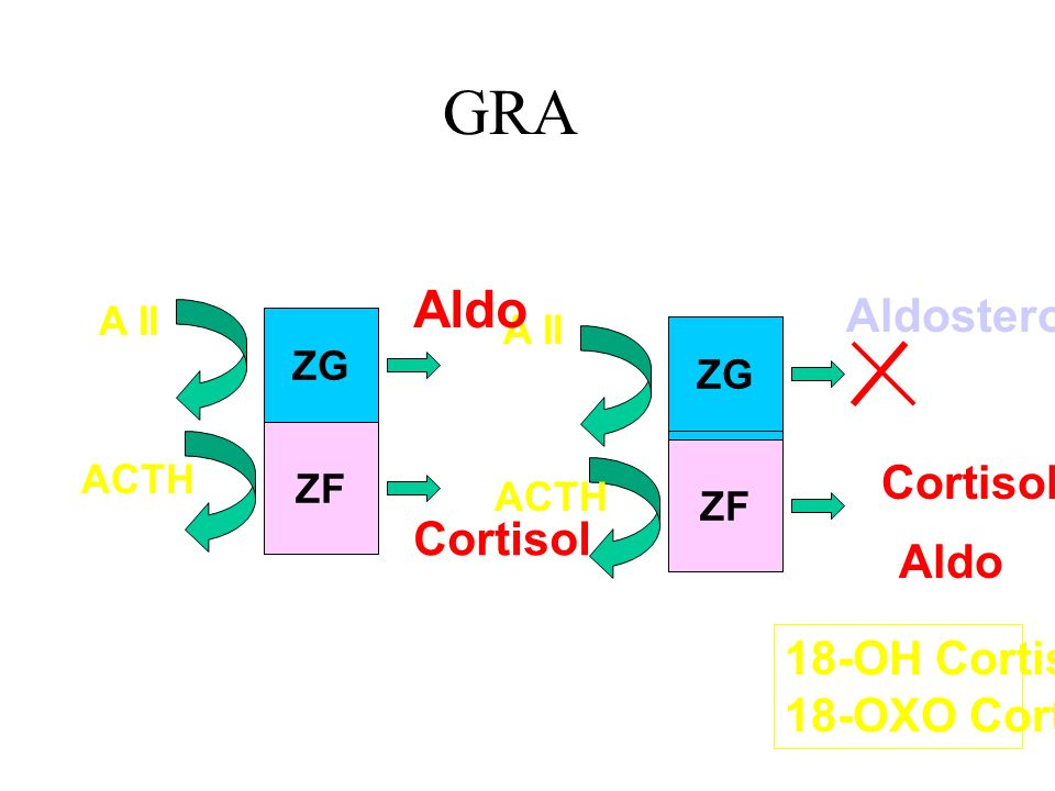 GRA Aldo Aldosterone Cortisol Cortisol Aldo 18-OH Cortisol