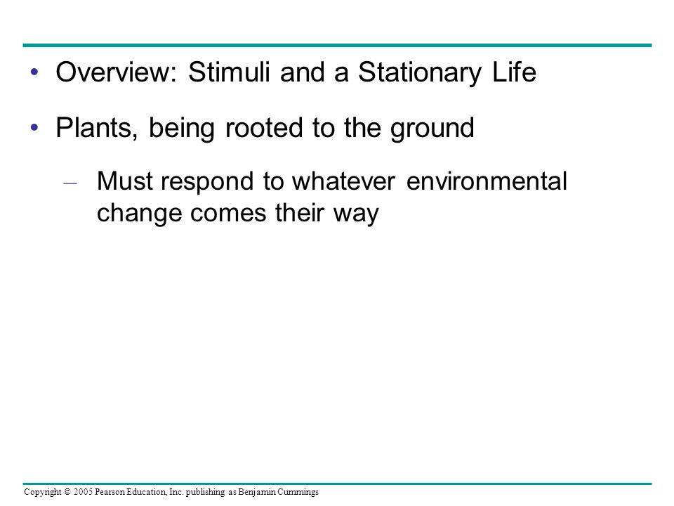 Overview: Stimuli and a Stationary Life