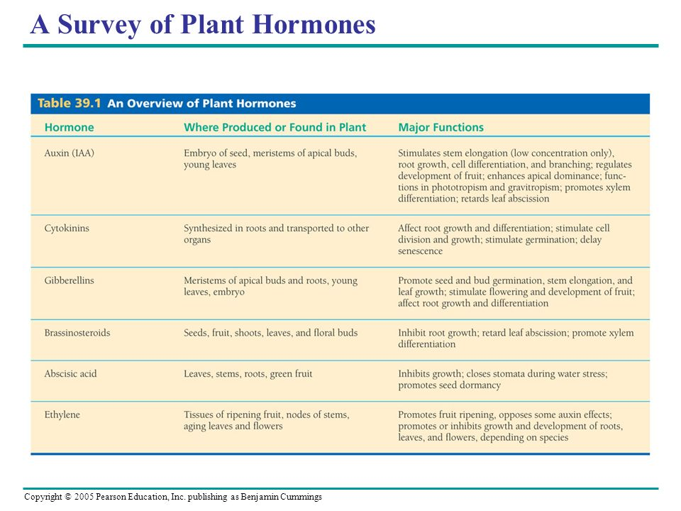 A Survey of Plant Hormones