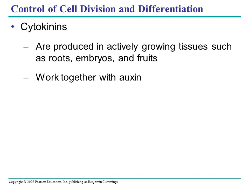 Control of Cell Division and Differentiation