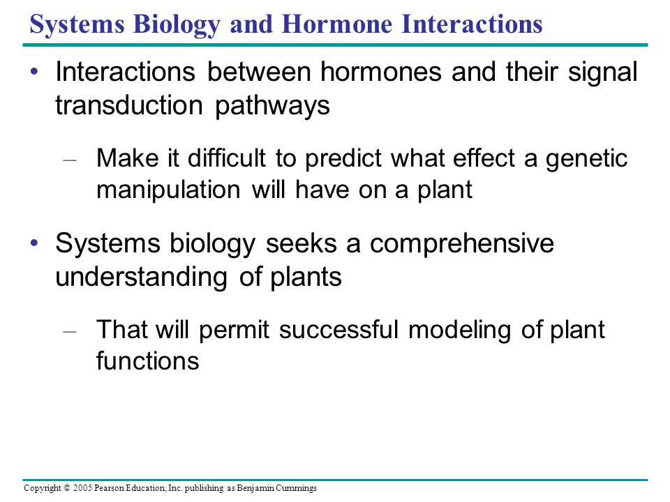 How does interactions between biological systems