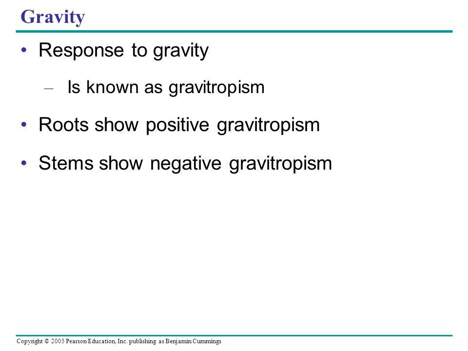 Roots show positive gravitropism Stems show negative gravitropism