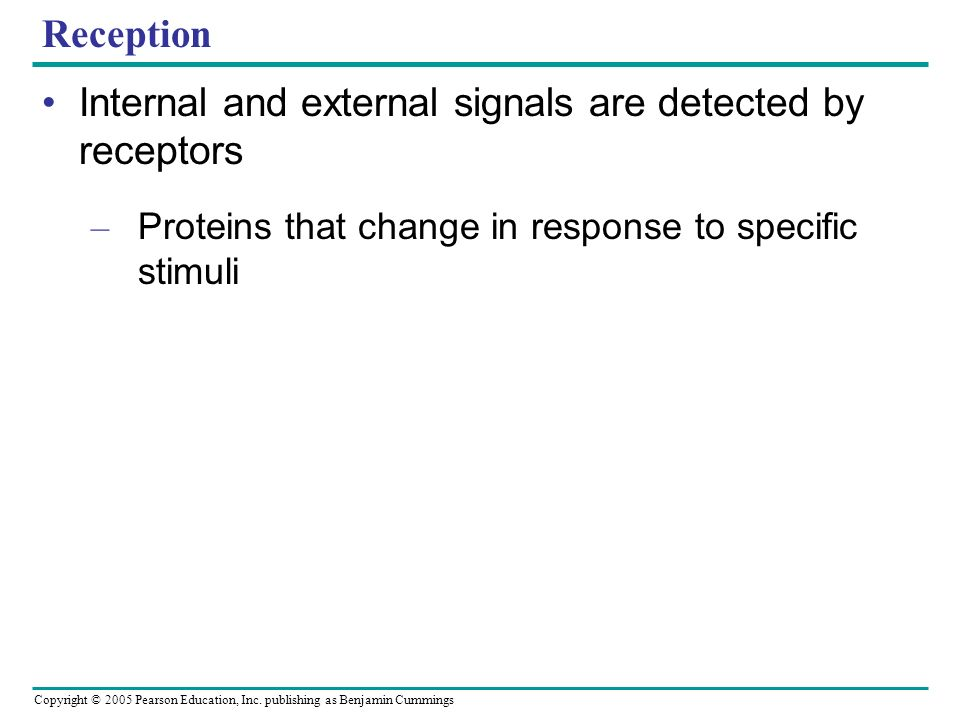 Internal and external signals are detected by receptors