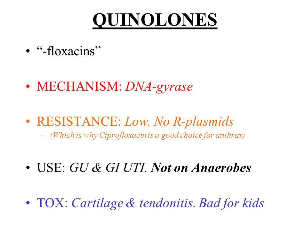 QUINOLONES -floxacins MECHANISM: DNA-gyrase