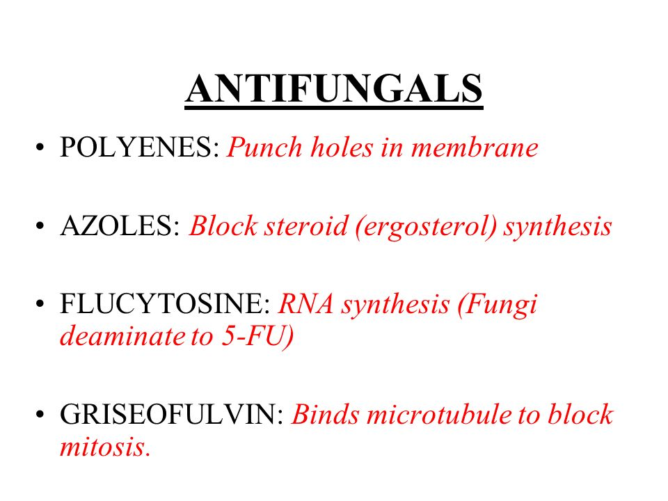 ANTIFUNGALS POLYENES: Punch holes in membrane
