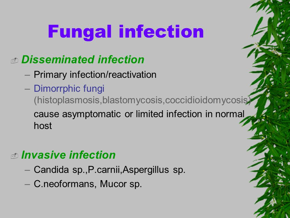 Fungal infection Disseminated infection Invasive infection