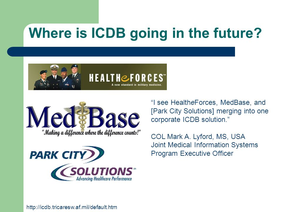 Where is ICDB going in the future