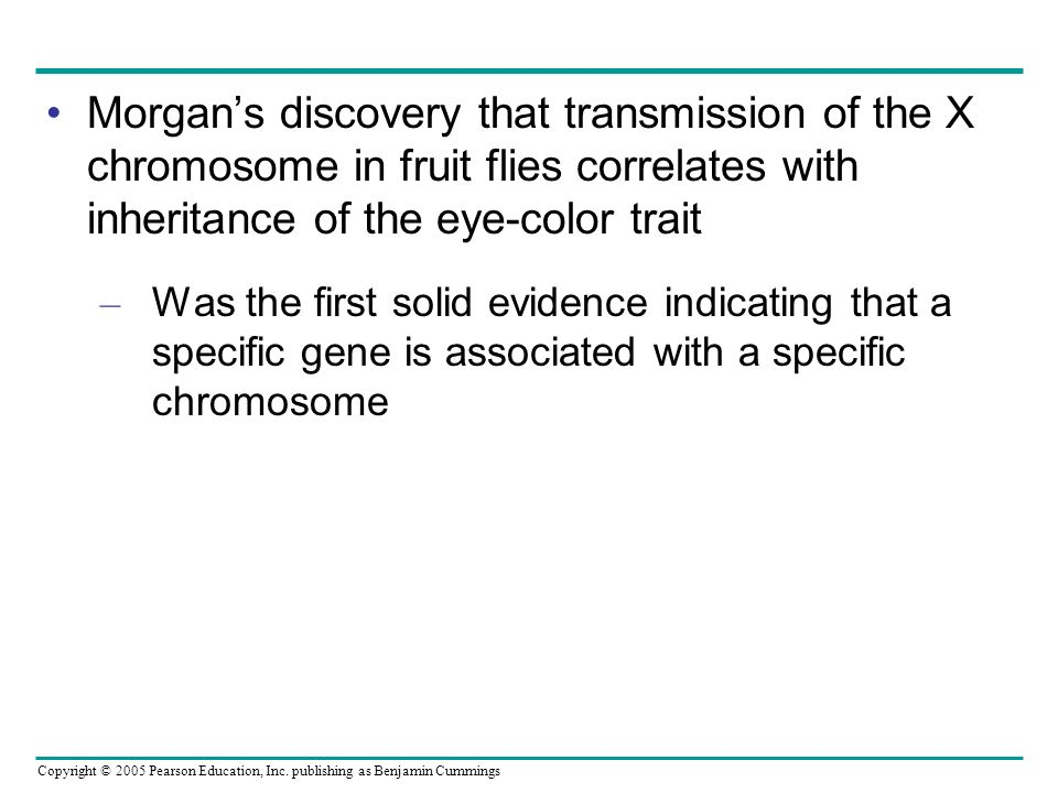 Morgan's discovery that transmission of the X chromosome in fruit flies correlates with inheritance of the eye-color trait