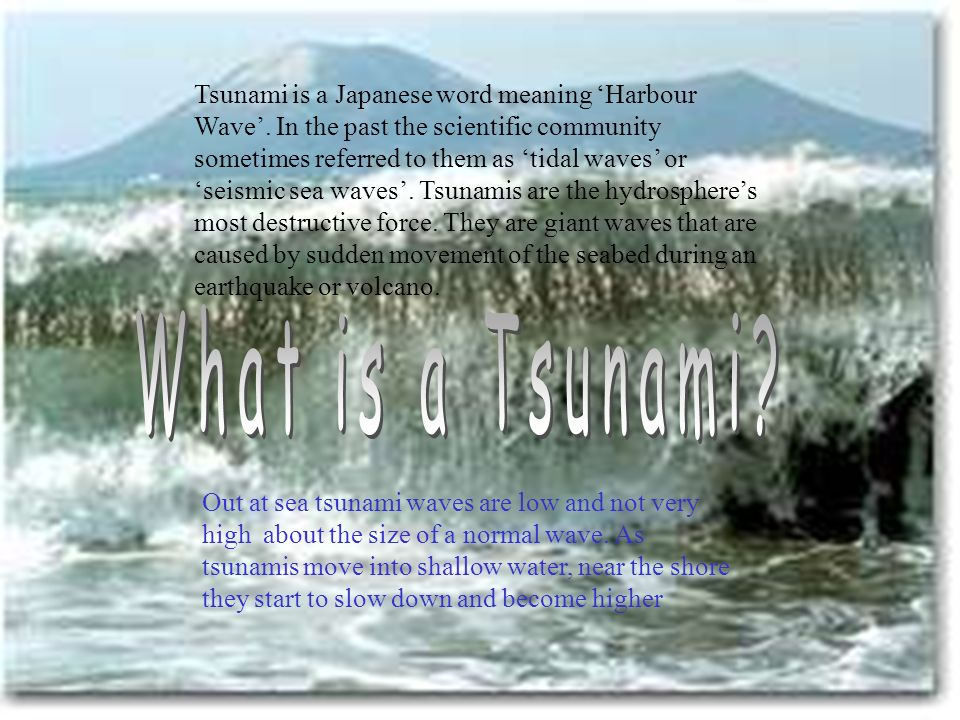 Tsunami is a Japanese word meaning 'Harbour Wave'