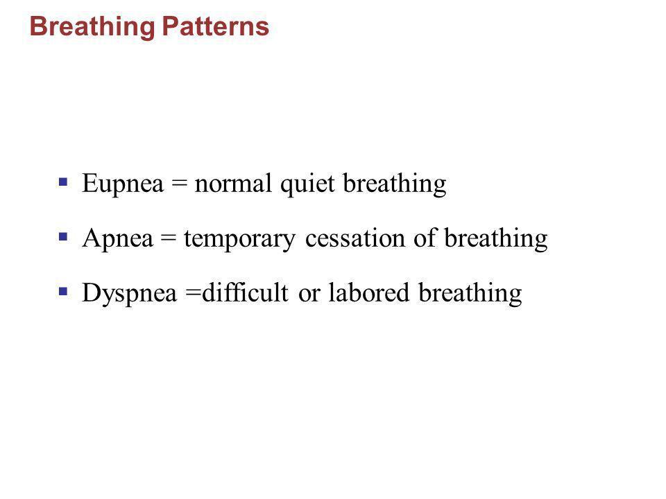 Eupnea = normal quiet breathing