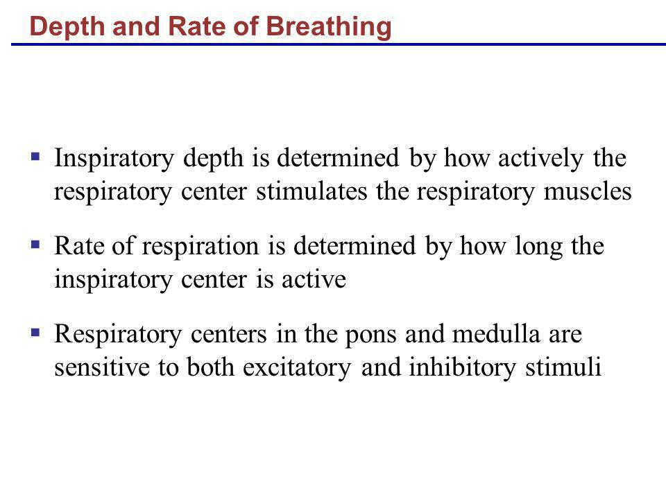 Depth and Rate of Breathing