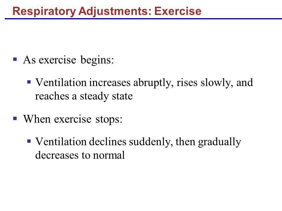 Respiratory Adjustments: Exercise