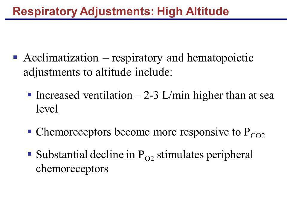 Respiratory Adjustments: High Altitude