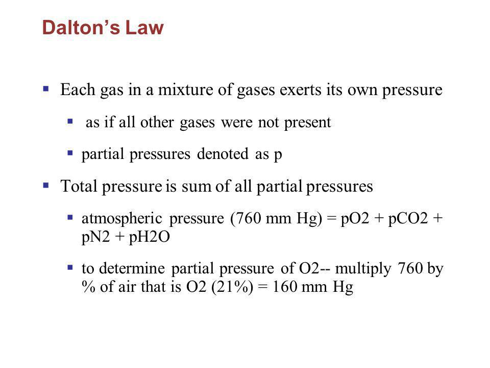 Dalton's Law Each gas in a mixture of gases exerts its own pressure