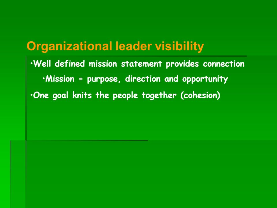Organizational leader visibility