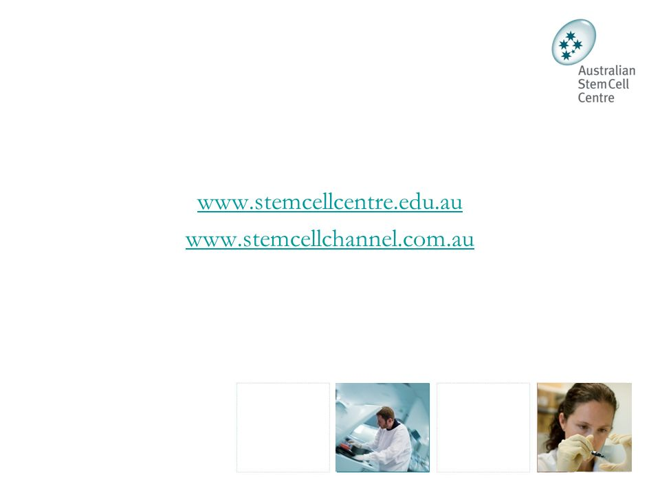 www.stemcellcentre.edu.au www.stemcellchannel.com.au