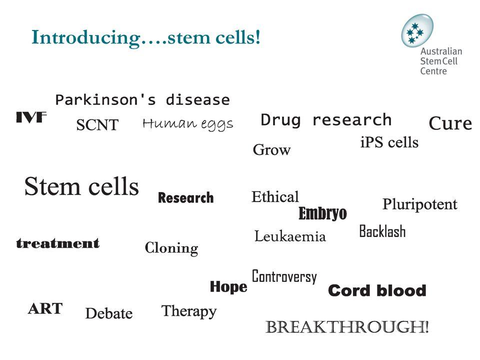 Introducing….stem cells!