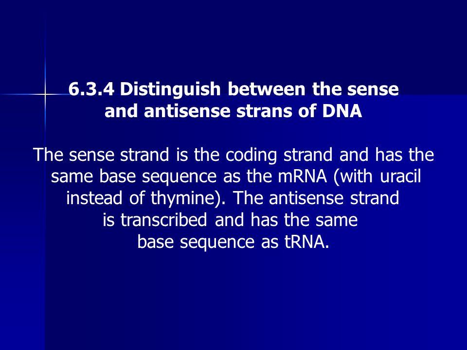 6.3.4 Distinguish between the sense
