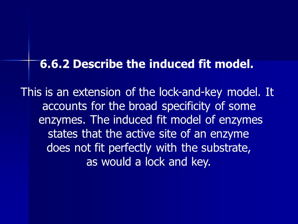 6.6.2 Describe the induced fit model.