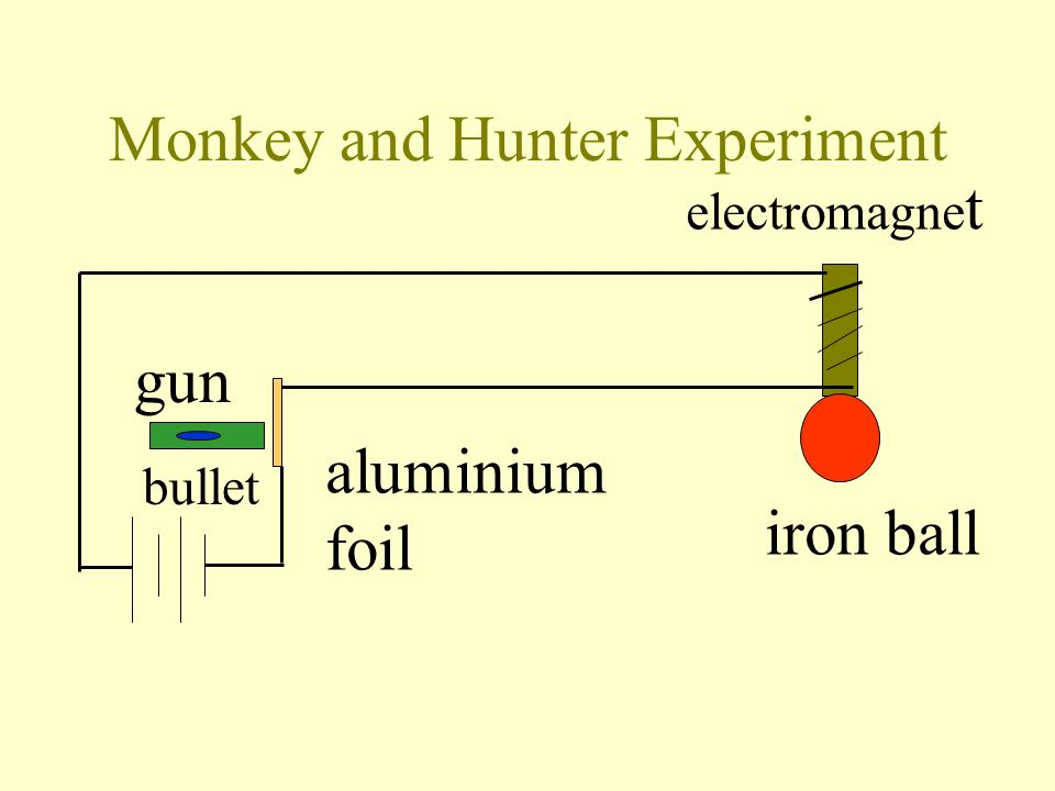 Monkey and Hunter Experiment