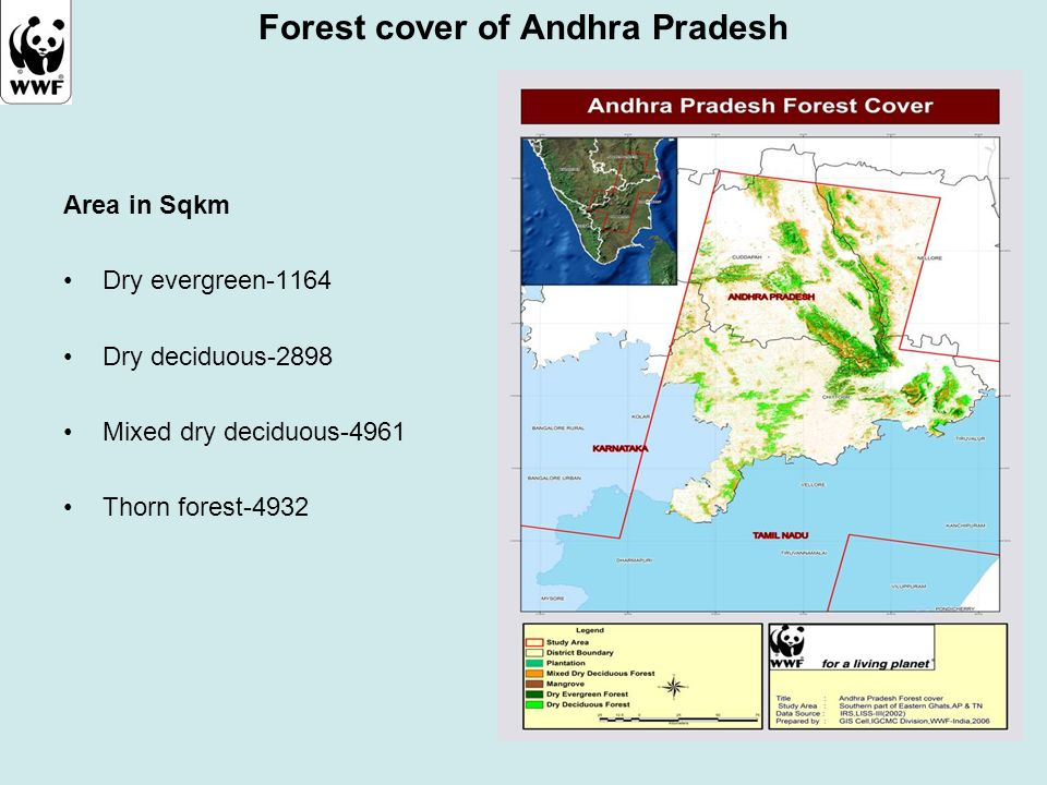 Forest cover of Andhra Pradesh