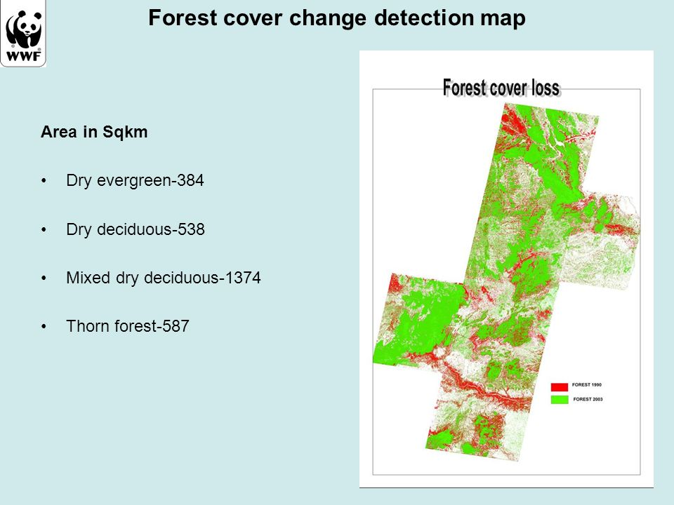 Forest cover change detection map