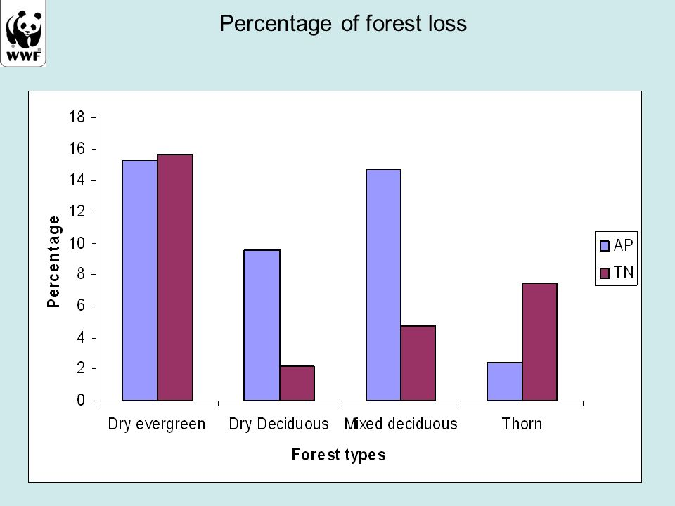 Percentage of forest loss