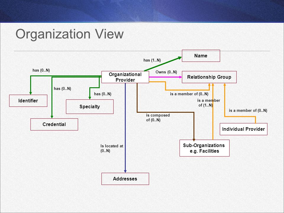 Organization View Name Organizational Relationship Group Provider