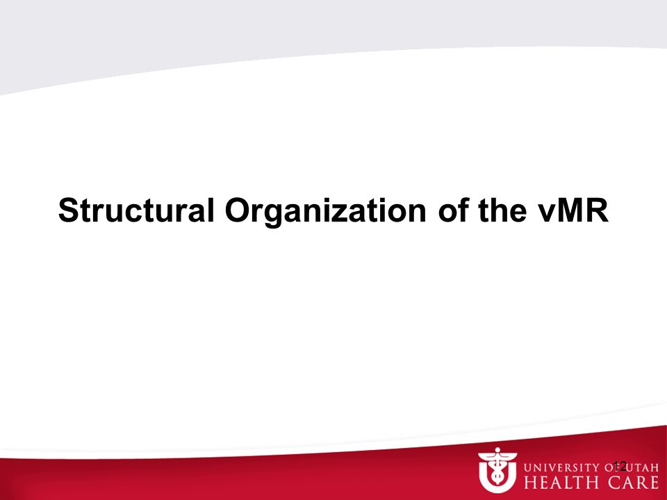 Structural Organization of the vMR