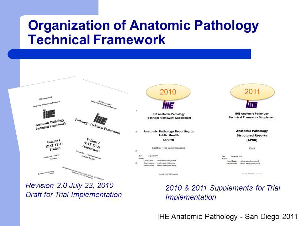 Organization of Anatomic Pathology Technical Framework