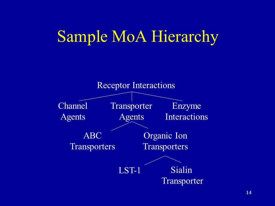 Sample MoA Hierarchy Receptor Interactions Channel Agents Transporter