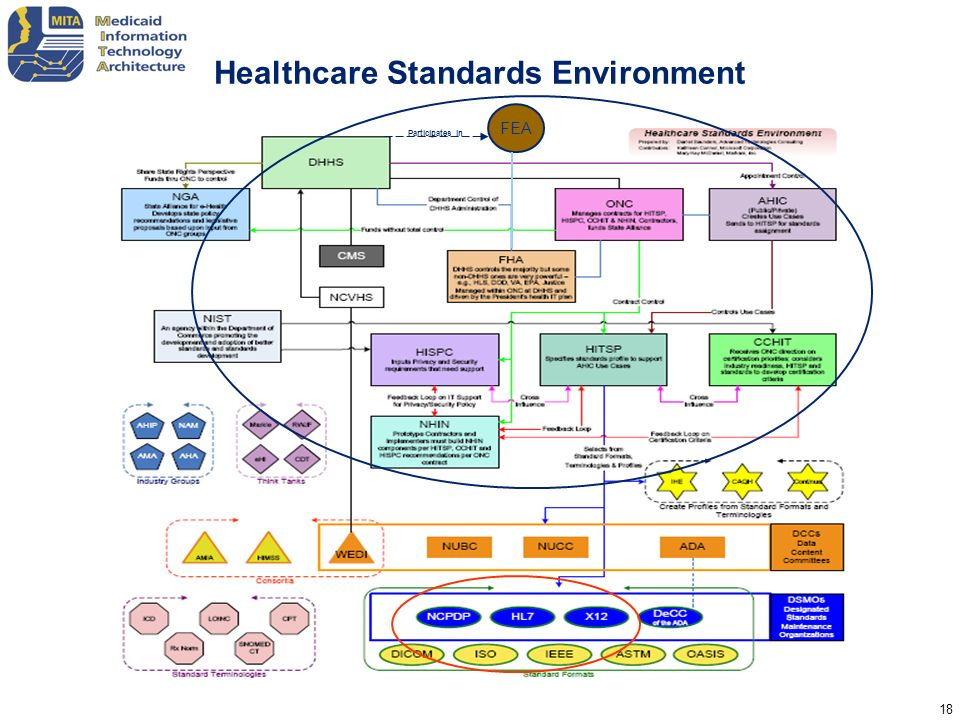Healthcare Standards Environment