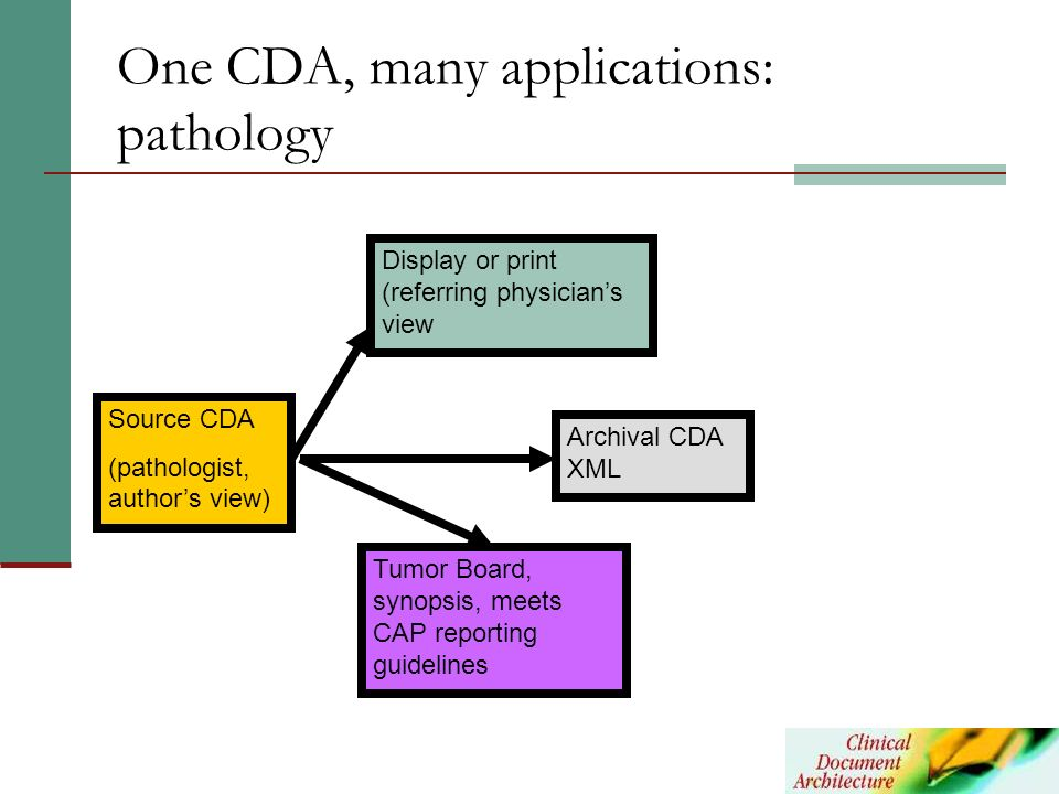 One CDA, many applications: pathology