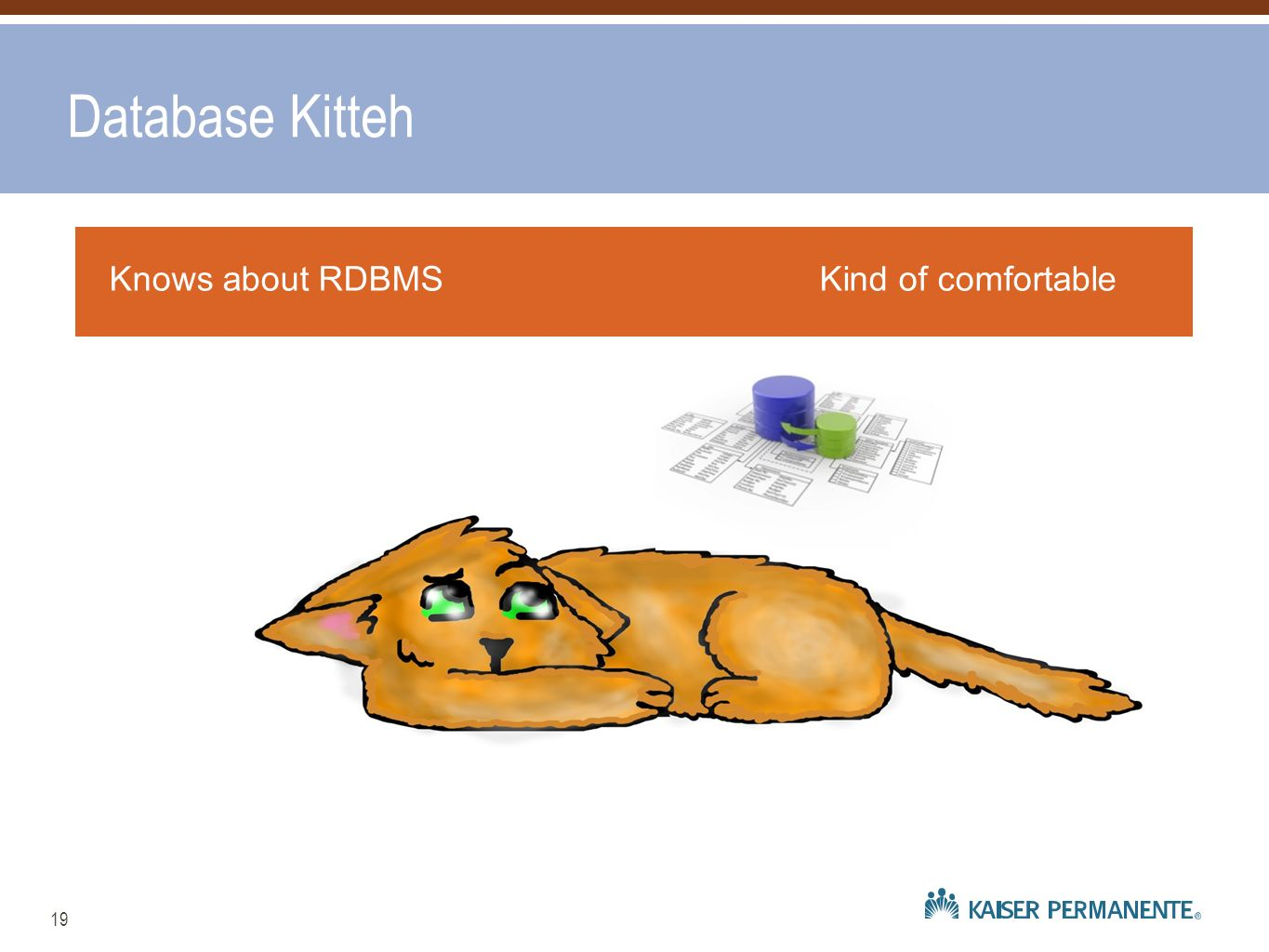 Database Kitteh Knows about RDBMS Kind of comfortable