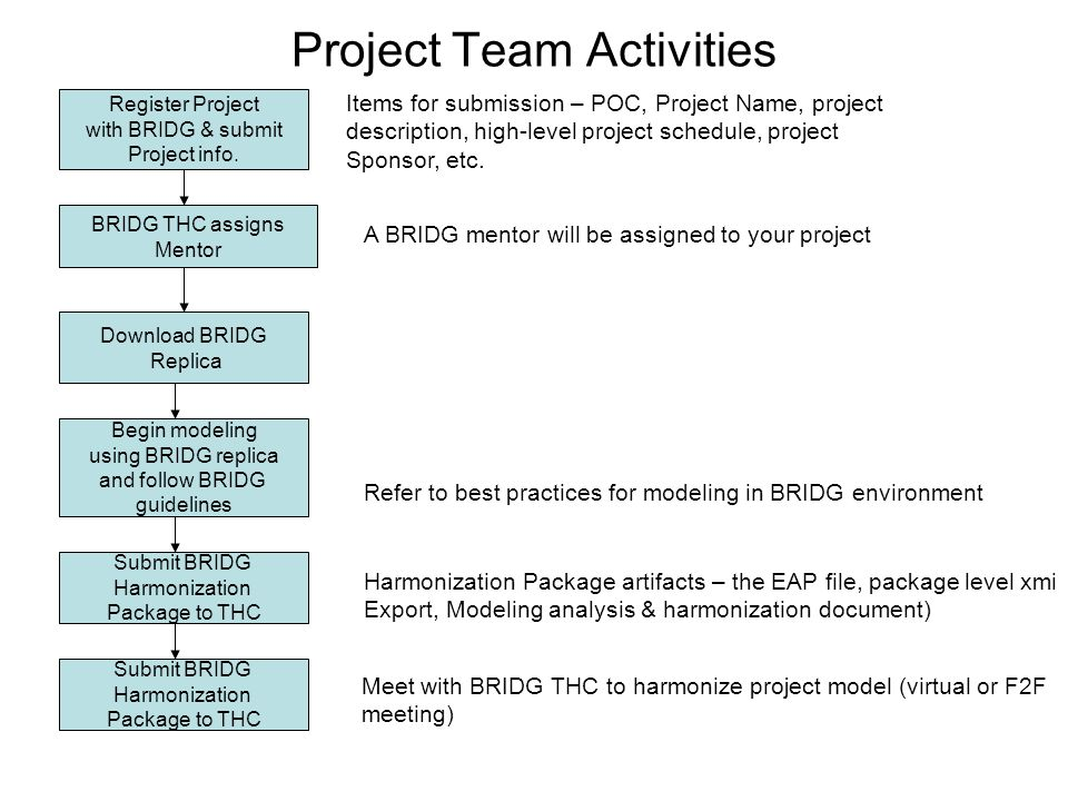 Project Team Activities