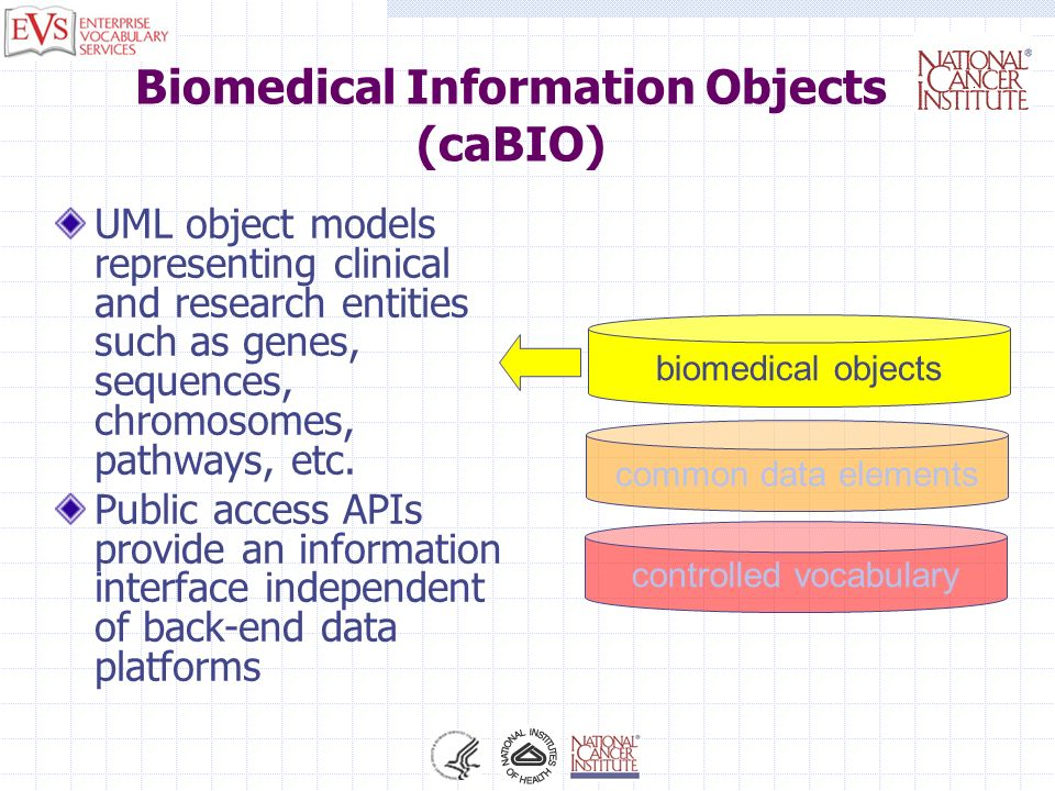 Biomedical Information Objects (caBIO)