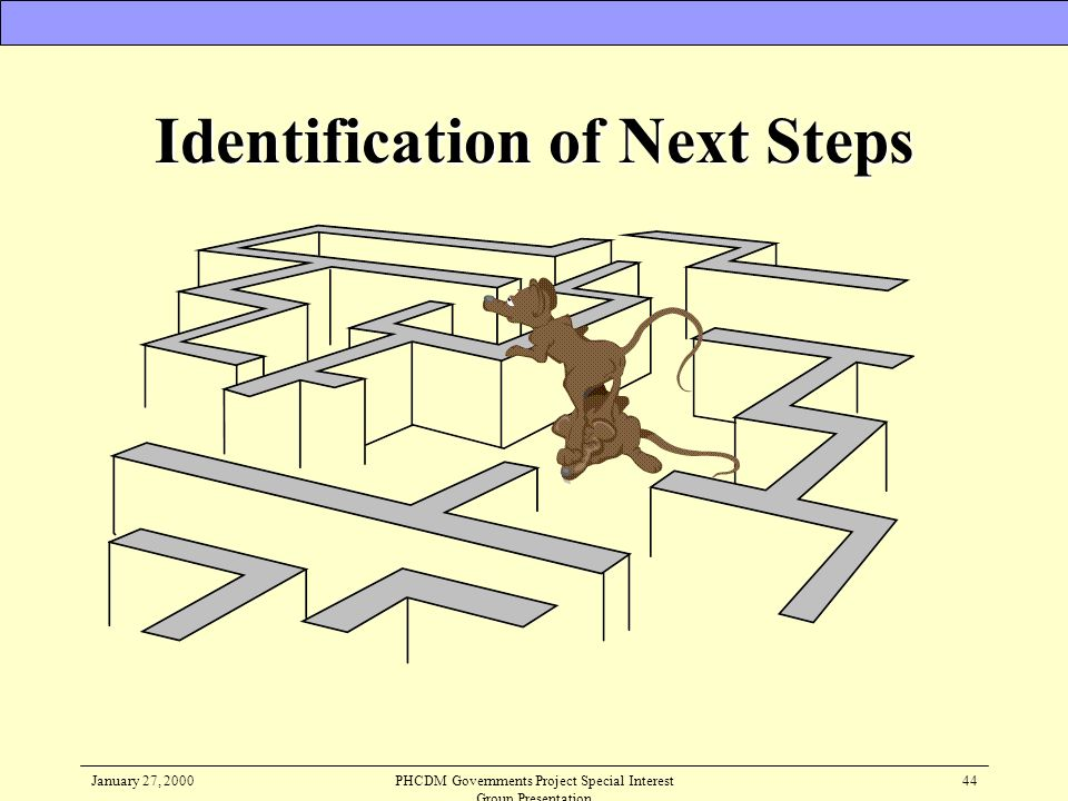 Identification of Next Steps