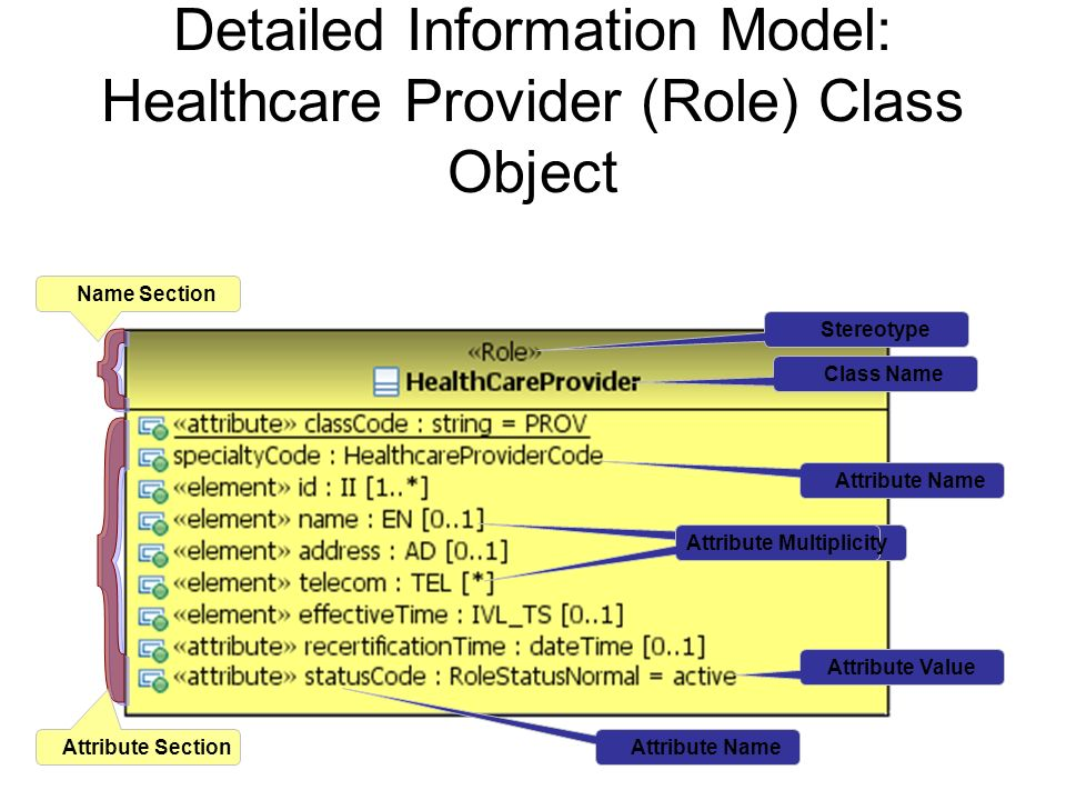Detailed Information Model: Healthcare Provider (Role) Class Object