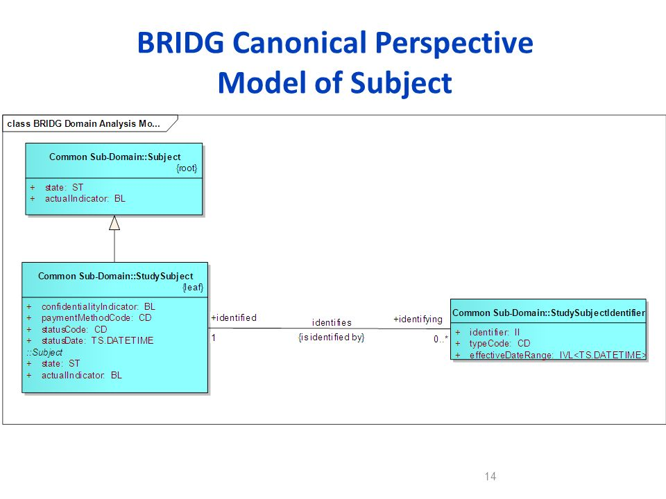 BRIDG Canonical Perspective Model of Subject