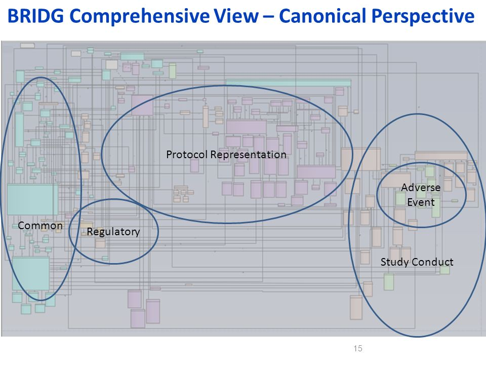 BRIDG Comprehensive View – Canonical Perspective